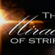 Pastor David Myers Palm Bay Sermon Miracle of Stripes